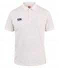 Performance - Cricket