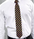 Premier Sports Stripe Tie